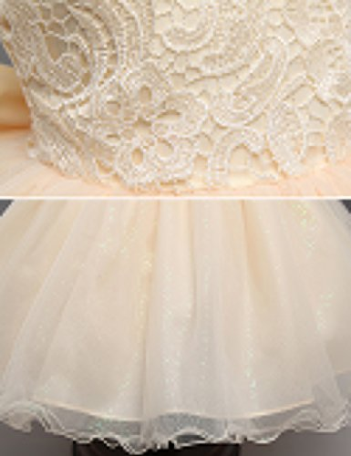5008ed2c55 21KIDS Baby Girls Sequins Tulle Lace Flower Bridesmaid Gown Backless Dress  with Bow for Party Wedding,Champagne(sequins Tulle),2-3 Years
