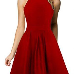 Berydress Women's Halter Neck Backless Black Cocktail Party Dress (US6, 6019_Red)