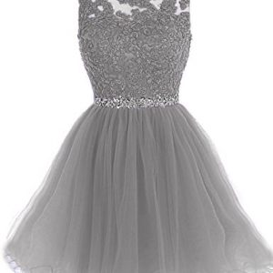 Clearbridal Tulle Homecoming Dresses 2017 Short For Juniors A Line Sheer Neck Prom Dresses Ball Gown Keyhole Gray,8,Sd361-gray