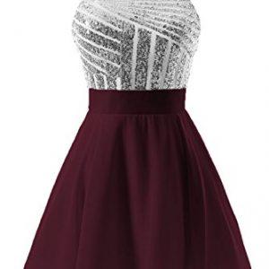 DYS Women's Short Halter Prom Party Dress Backless Homecoming Dress for Juniors Silver-burgundy US 8