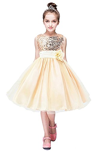 ZAH Sequin Mesh Flower Party Wedding Gown Bridesmaid Tulle Dress Little Girl(Gold/Bronze,4-5Y)