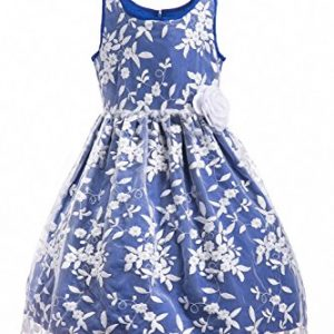 Emma Riley Girls' Sleeveless Floral Embroidered Mesh Pleated A-Line Princess Party Dress, Blue Embroidery, 8